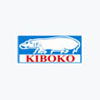 Kiboko Holdings